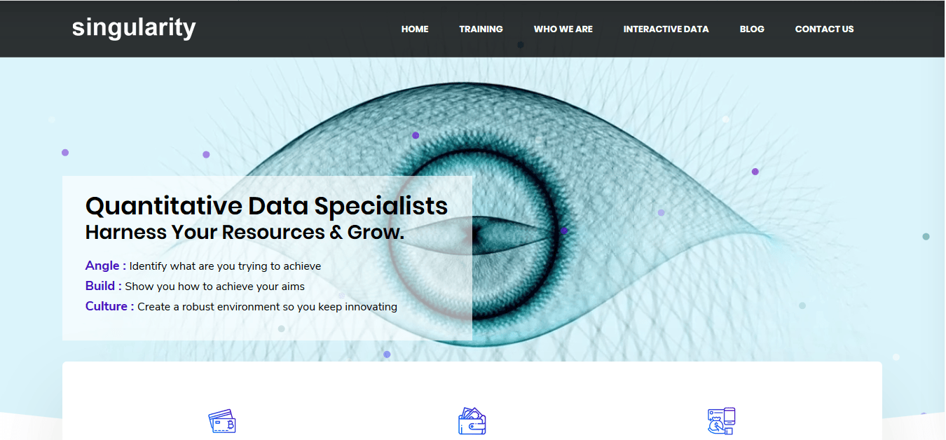 A screen shot of our client's website